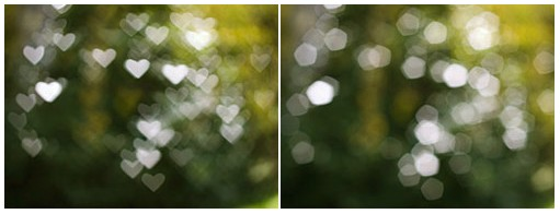 Bokeh is a Japanese term for the creamy, out-of-focus area.